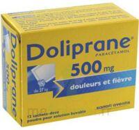 DOLIPRANE 500 mg Poudre pour solution buvable en sachet-dose B/12 à SAINT CHRISTOLY DE BLAYE