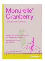 MONURELLE CRANBERRY, bt 30 à SAINT CHRISTOLY DE BLAYE