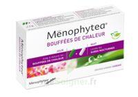 MENOPHYTEA BOUFFEES DE CHALEUR, bt 40 (20 + 20) à SAINT CHRISTOLY DE BLAYE