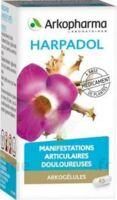 ARKOGELULES HARPAGOPHYTON, 150 gélules à SAINT CHRISTOLY DE BLAYE