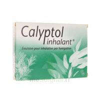 CALYPTOL INHALANT, émulsion pour inhalation par fumigation à SAINT CHRISTOLY DE BLAYE