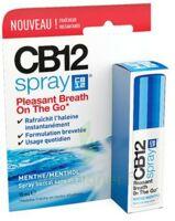 CB 12 Spray haleine fraîche 15ml à SAINT CHRISTOLY DE BLAYE