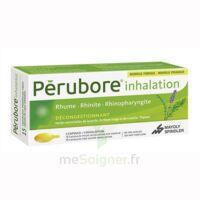 PERUBORE Caps inhalation par vapeur inhalation Plq/15 à SAINT CHRISTOLY DE BLAYE